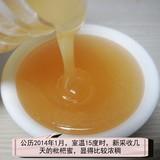 极品高山枇杷土蜂冬蜜500g